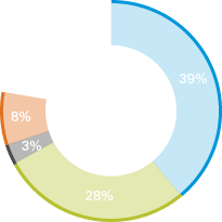 39% 28% 3% 8% 22%