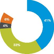 41% 33% 4% 6% 16%