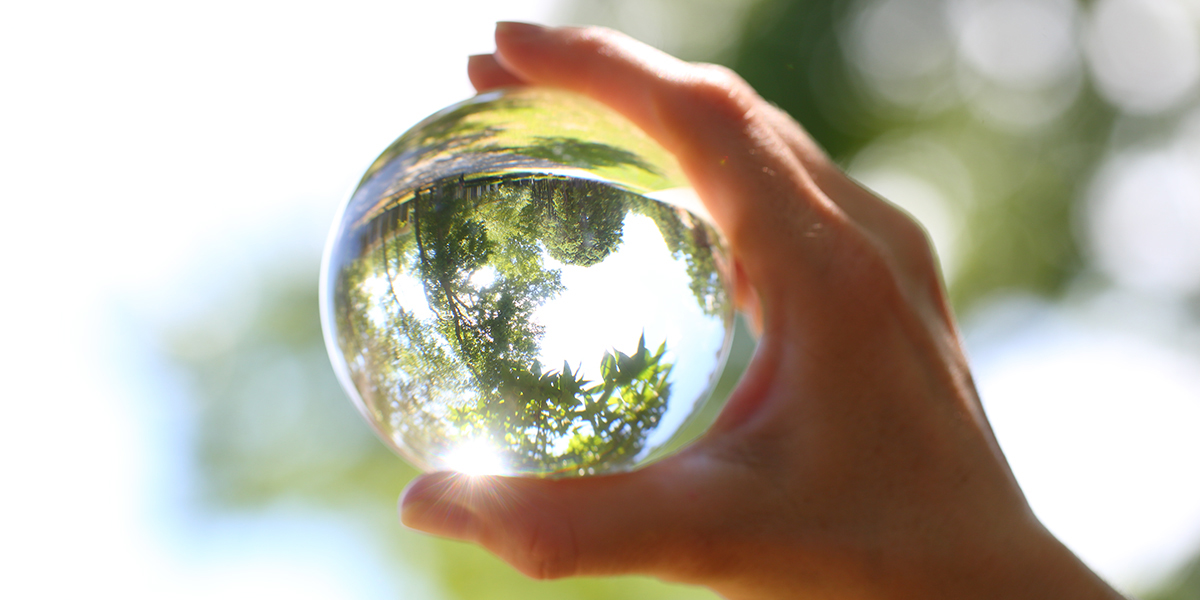 Lens ball with trees