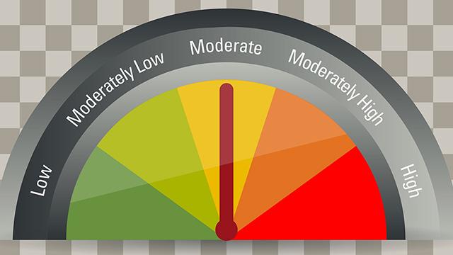 Risk rating gauge